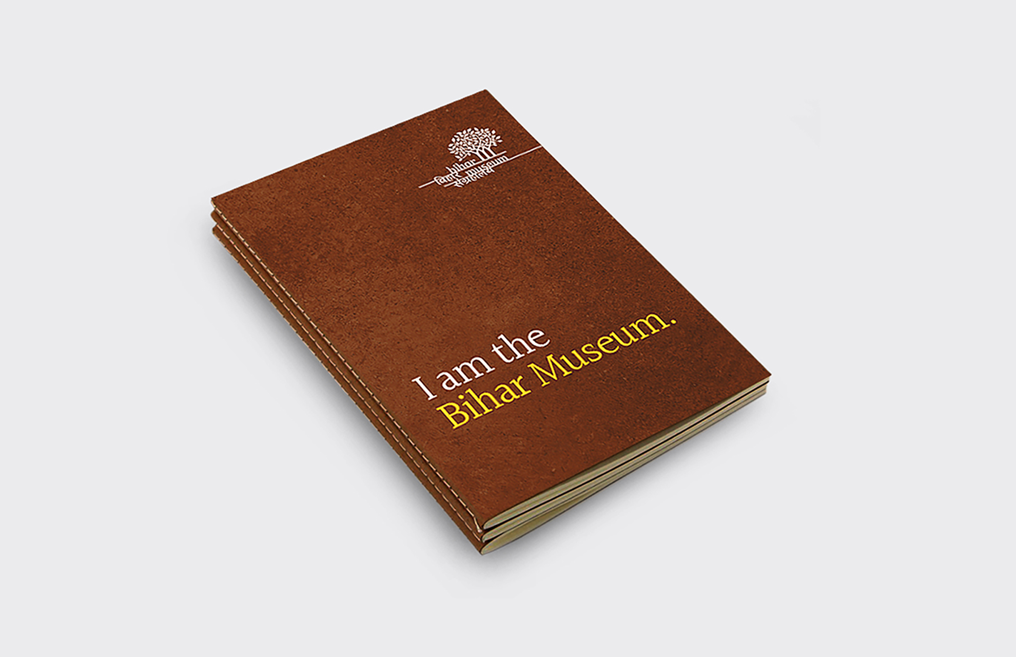 I am Bihar book 2